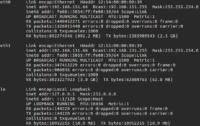 IP-Adressen für Anfänger